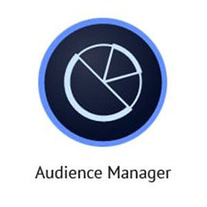 Adobe Audience Manager: The Best Big Data Analytics Tools. Adobe Audience Manager Logo