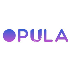Opula Software Development Top Web Design And Development Companies In India