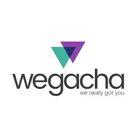Wegacha is the best digital advertising agency based in Florida