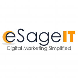 eSageIT came into existence when our existing clients in the United States of America and Europe who are given 24X7 technical support for Business IT and Management IT Services suggested us to start with Web Development & Designing, SEO, etc; a new chapter came into existence. Since then, there is no looking back. Thanks to the trust invested in them by their employees and clients. The organization was one man show which has more than 40 employees in the family of eSageIT.