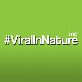 Viral In Nature is an award-winning social media agency ranked by different market research companies as one of the top social media agencies in the world.