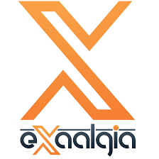 Exaalgia   Top Internet Marketing Agency In Arizona, USA