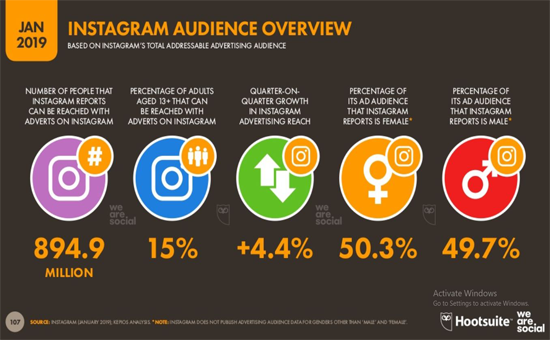 Instagram audience overview, 2019