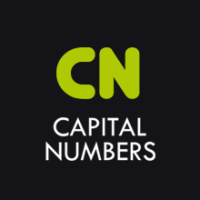 Capital Numbers : D&B accredited global solutions provider in India