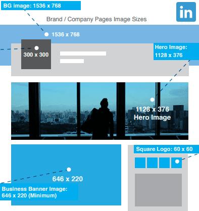 LinkedIn Image Size 2020: LinkedIn Profile Picture Size, LinkedIn Cover Photo Size, LinkedIn Banner Size
