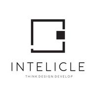 Intelicle : The best web design agency in Nottingham | DMC