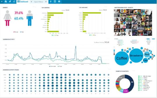 influencer marketing platform: Scalefluence