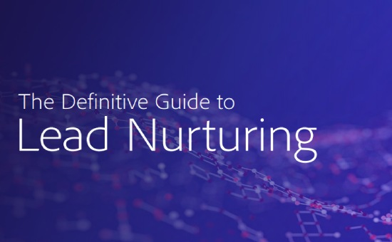 The Definitive Guide to Lead Nurturing 2020 | DMC