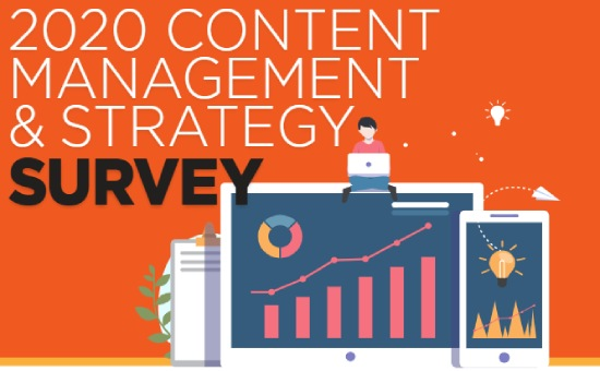 2020 Content Management & Strategy Survey | DMC