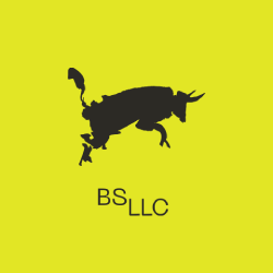 BS LLS: Design Firm in the USA | DMC