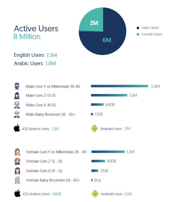 Facebook Insights and Usage in UAE, 2020   DMC