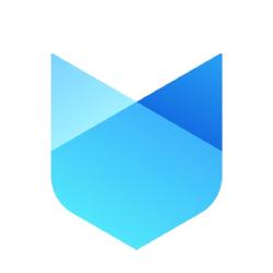 Social Fox: Digital Marketing Agency | DMC