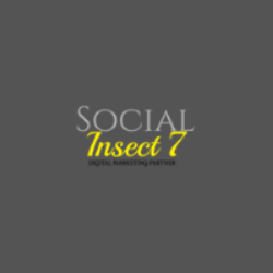 Social Insect 7: Web Marketing Agency in India | DMC