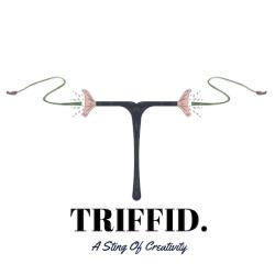 Triffid: Digital Marketing Agency in India | DMC