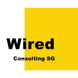 Wired Consulting: Digital Marketing Company | DMC