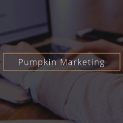 Pumpkin Marketing: Digital Marketing Agency in Victoria| DMC