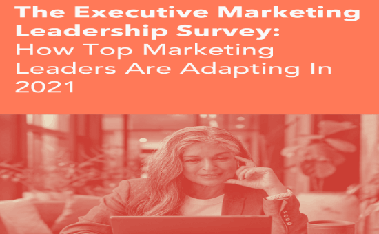The Executive Marketing Leadership Survey 2021 | DMC