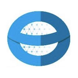 Everlin Technologies: Digital Marketing Agency in India |DMC