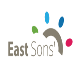 EastSons Technologies: Web Development Company in India |DMC