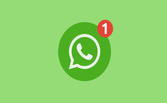 Know More About WhatsApp Payments in Brazil 2021 | DMC