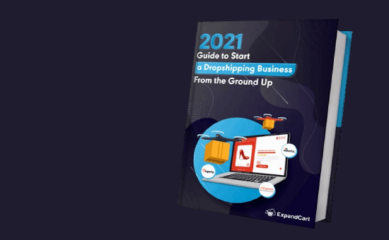 Start a Dropshipping Business in 2021 Ultimate Guide | DMC